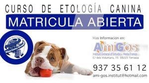 Curs etologia canina